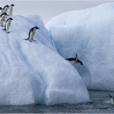 8 Tipping Points to make 2013 the Breakout Year for your Blog